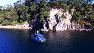10 Awesome Things to Do in Whitianga