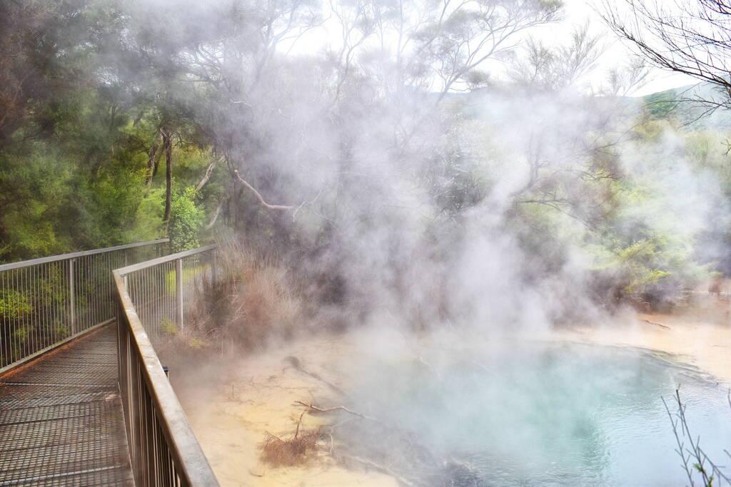 10 Amazing Things to Do in Turangi