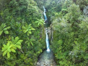 10 Amazing Things to Do in Takaka