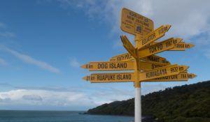 7 Best Walks in Bluff