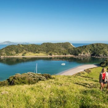 10 Must-Dos in the Bay of Islands