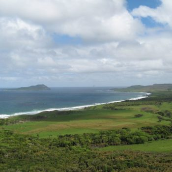 Chatham Islands (New Zealand)  Guide for Backpackers