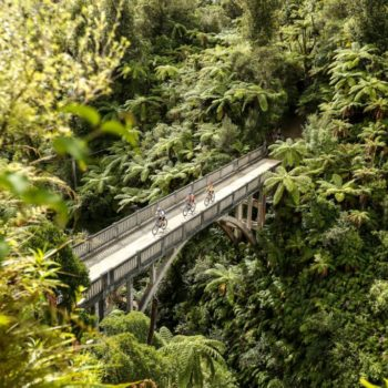 Whanganui National Park  Guide for Backpackers