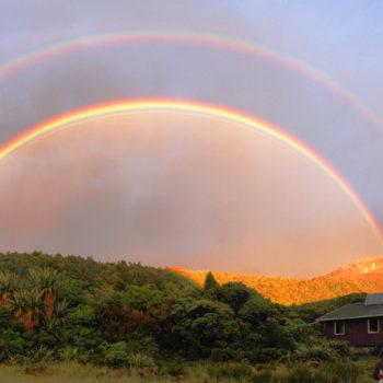16 Amazing Rainbow Pictures Taken in New Zealand