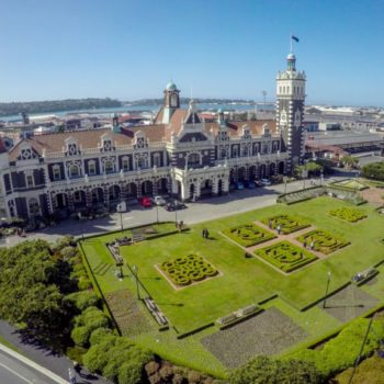 Dunedin  Guide For Backpackers