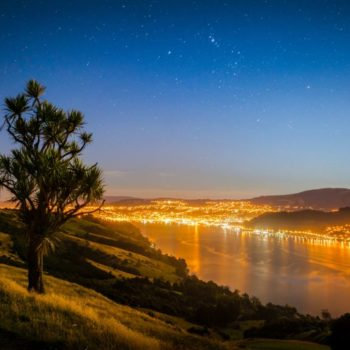 Accommodation Guide to Dunedin Region