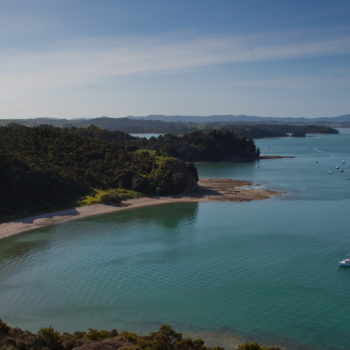 9 Places You Can't Miss on the Matakana Coast