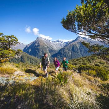Guide to the 10 Great Walks of New Zealand