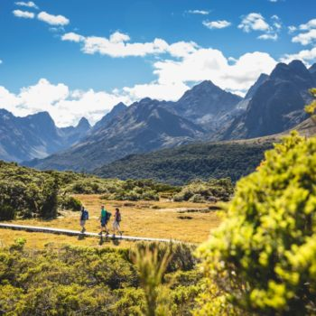 Top 10 Things to Do in New Zealand for Backpackers