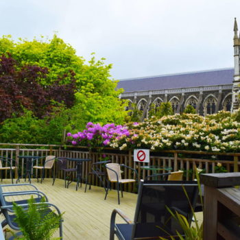 6 Best Backpacker Hostels in Dunedin