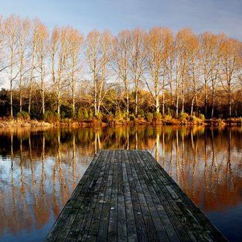 10 Beautiful Gardens & Parks in Christchurch