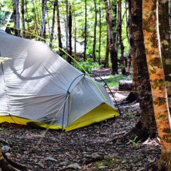 15 Free Camping Spots in Wellington