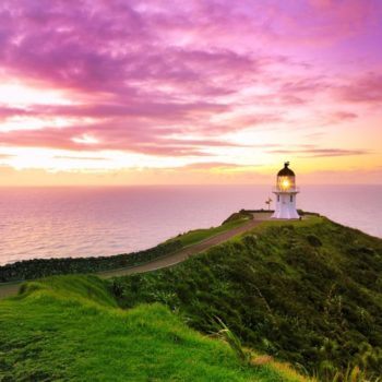 6 Incredible Things to Do at Cape Reinga