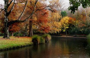 The Best New Zealand Tours Starting in Christchurch