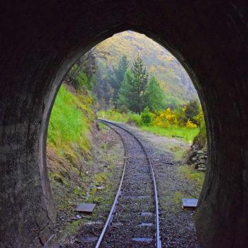 The Two Dunedin Railways