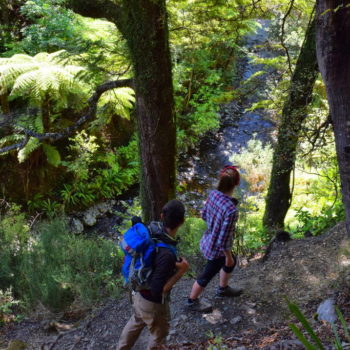 Hutt Valley  Guide for Backpackers