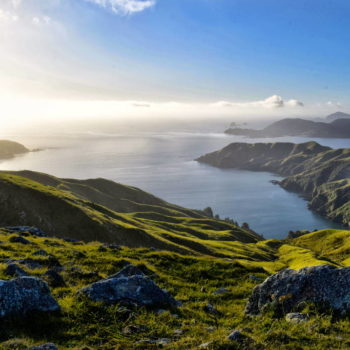 French Pass and D'Urville Island - Guide for Backpackers