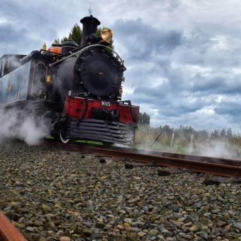 Eastland Roadie #3: Waioeka Gorge and the Gisborne Steam Train