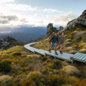 The Complete Guide to the Hump Ridge Track
