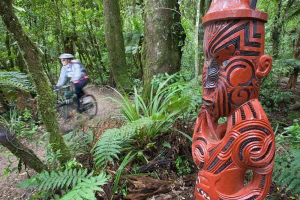 Hamilton & Waikato