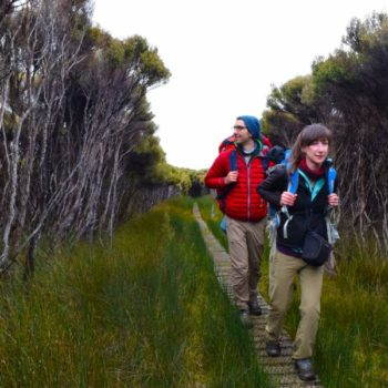 The Best New Zealand Hiking Tours