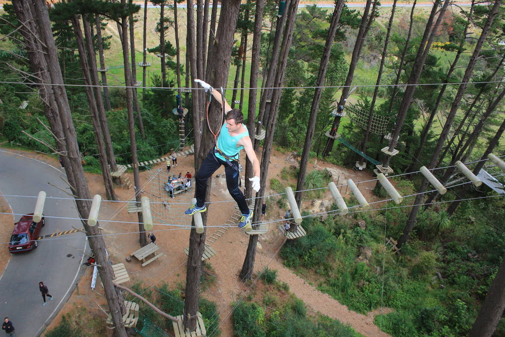 Tourism Bay of Plenty - Adrenalin Forest
