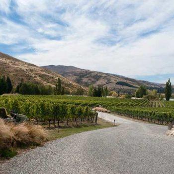 10 Wonderful Wineries in Cromwell & Bannockburn