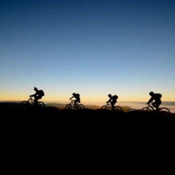 Mountain Biking in Reefton
