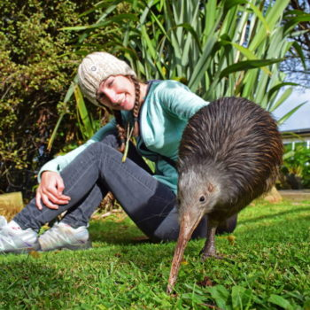 10 Things You Did Not Know About New Zealand Wildlife