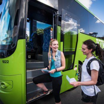 10 Best Ways to Travel Around New Zealand