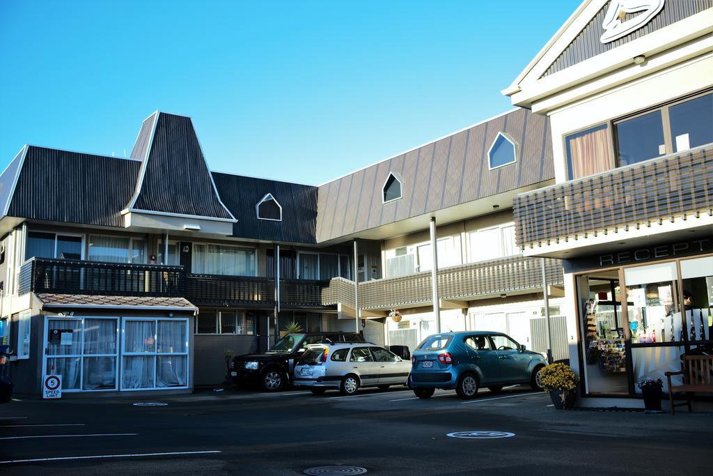 Kiwi Studio Motel