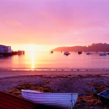 10 Free & Cheap Things to Do in Stewart Island