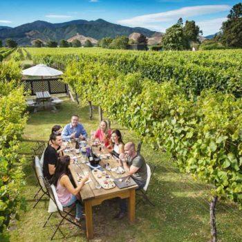 10 Best Wineries in Blenheim
