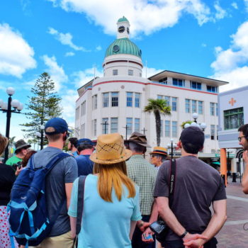 Accommodation Guide to Napier