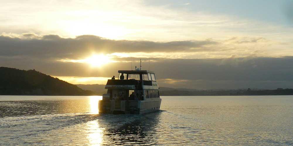 Raglan Boat Charter