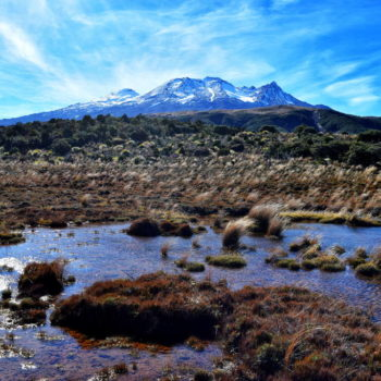 Ruapehu  Guide for Backpackers