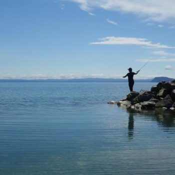 What You Need to Know About Fishing in New Zealand