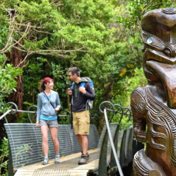 Picton - Guide for Backpackers