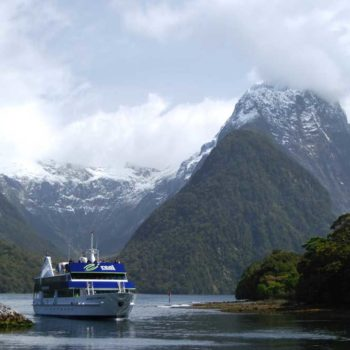 6 Best Cruises in Milford Sound