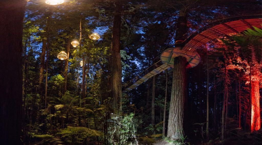 Redwoods Treewalk - Destination Rotorua