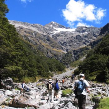 Arthur's Pass National Park  Guide for Backpackers