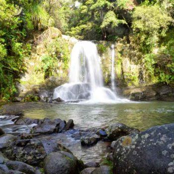 10 Best Walks in Whitianga