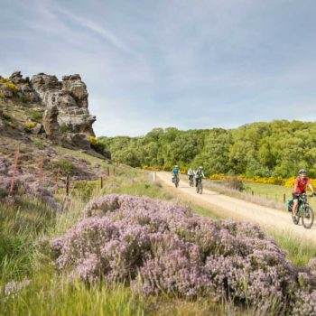 5 Best Bike Trails in Alexandra & Clyde