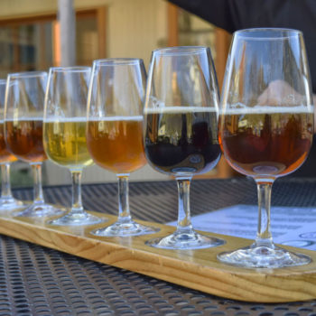 8 Craft Breweries in Nelson You Have to Try