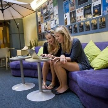 12 Best Backpacker Hostels in Wellington