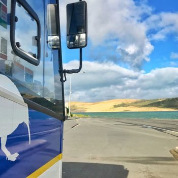 The Perfect New Zealand Bus Tour for Active Travellers