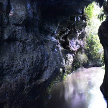 15 Free Things to Do in Waitomo