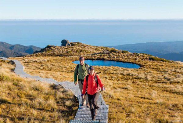 Tareen Ellis - Tourism NZ