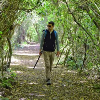 10 Best Walks in Invercargill