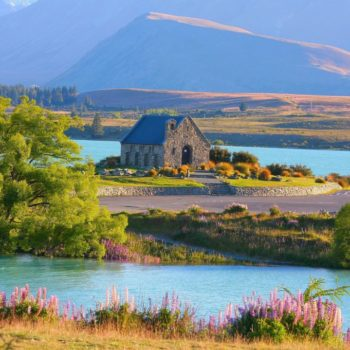 5 Best Backpacker Hostels in Lake Tekapo